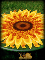 Sunflowers theme for hand painted furniture